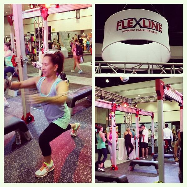 IW BlogFest _Flexline Demo
