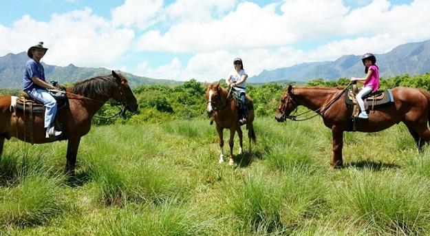 Kauai_Family Pic-Horses