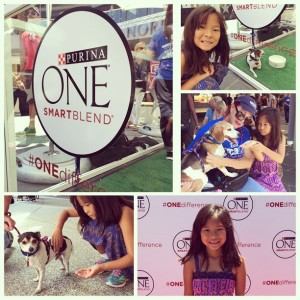 #ONEDifference with Jesse Tyler Ferguson and Purina ONE