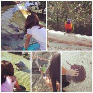 Behind the Scenes at Aquarium of the Pacific
