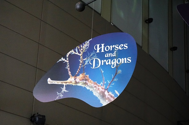 Horses And Dragons Signage