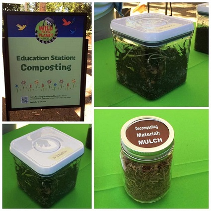 Wild For the Planet - Composting