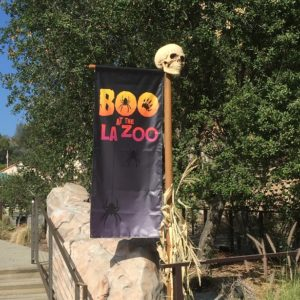 Boo at the LA Zoo – October 2016