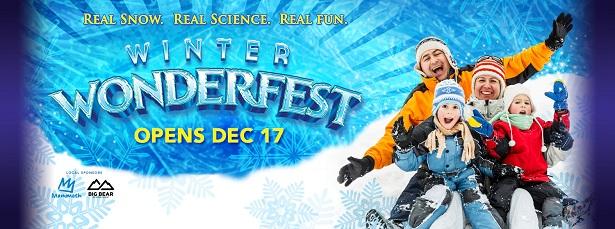 Winter Wonderfest - Banner 2