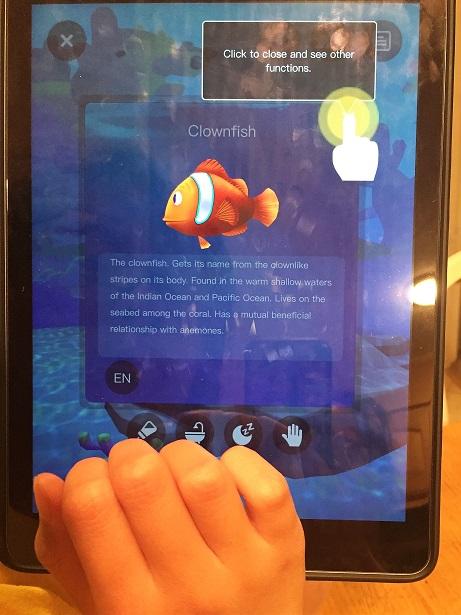 Pai Technology Ocean Pets Fun Facts