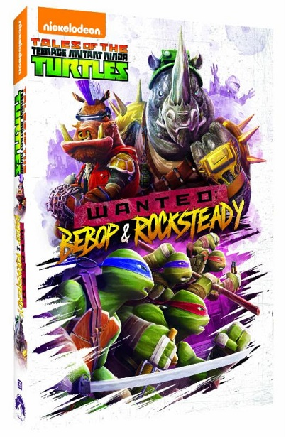 Teenage Mutant Ninja Turtles DVD-Side Angle