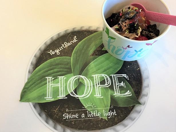 Yogurtland Ice Cream Hope