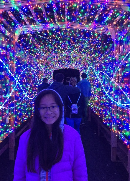 L.A. Zoo Lights Twinkle Tunnel 2