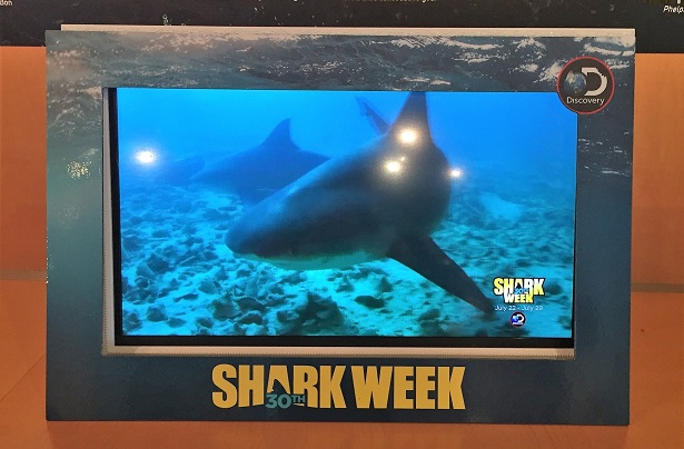 Shark Week - Paley Center video