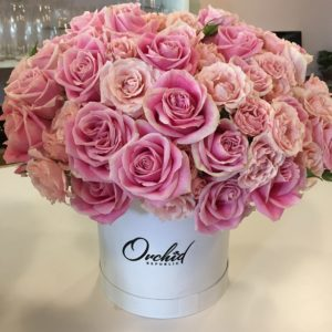 Flower Power at Orchid Republic in Sherman Oaks