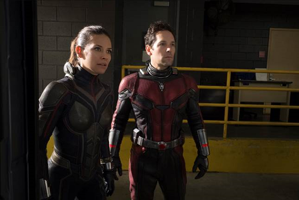Ant Man and The Wasp Film Still