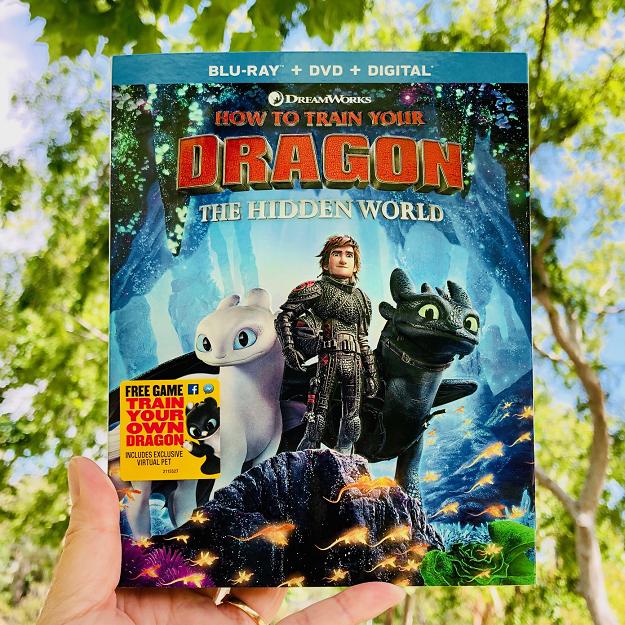 HTTYD3 Hidden World DVD Cover