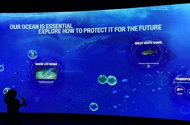 Pacific Visions Aquarium Pacific - Interactive Game
