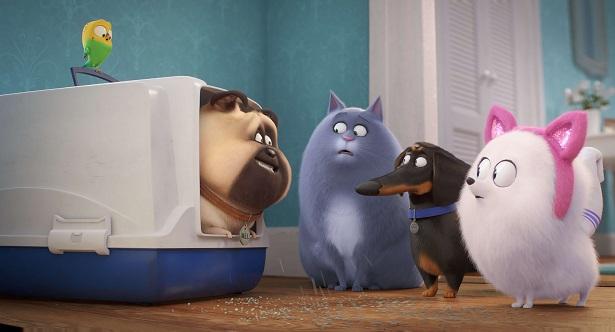 Secret Life of Pets - Scene