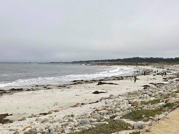 17-Mile Drive - Beach View