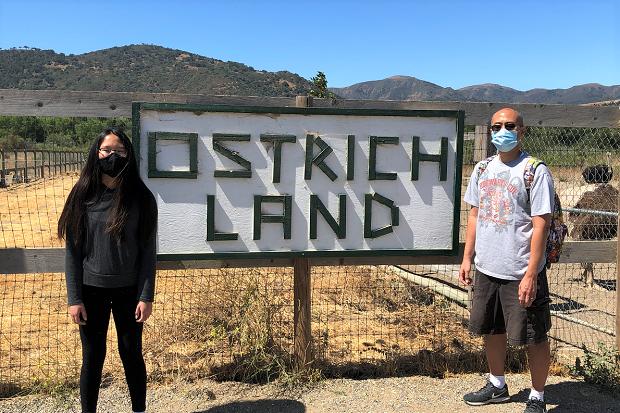 Ostrich Land - sign