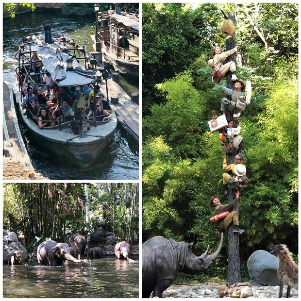 Jungle Cruise - Disneyland Ride